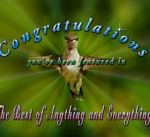 Feature Banner for The Best of Everything and Anything Challenge by TJ Baccari Photography