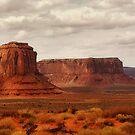 Monument Valley, Utah by AnaCBStudio