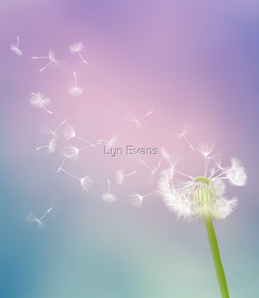 Blow your cares away by Lyn Evans