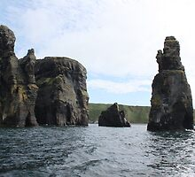 Sea Stack,Carrigaholt,Clare by Jean O'Callaghan