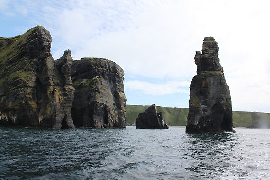 Sea Stack,Carrigaholt,Clare by Jean O&#x27;Callaghan