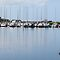 Kilrush Marina,Co.Clare by Jean O&#x27;Callaghan