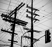 Power lines by yreese