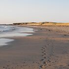 our footprints in the sand by Jean O'Callaghan