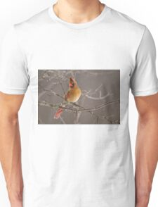 Female Northern Cardinal T-Shirt