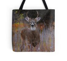 'The Prince' - White-tailed Deer Tote Bag