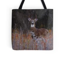 A regal stance - White-tailed Deer 2 Tote Bag