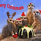Merry Meerkats by Krys Bailey