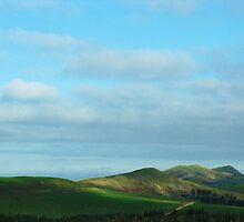 Scottish Borders Near Carter Bar by artwhiz47