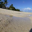 An Ant's Eye View of the Beach in Mauritius by Keith Richardson