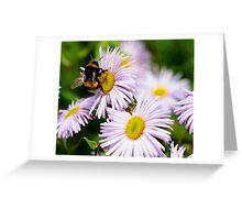 Nectar! Greeting Card