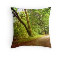 Natural tunel Throw Pillow