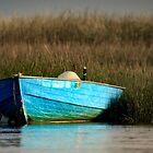 Cape Cod Eastham, Boat Meadow - Blue Boat by Artist Dapixara