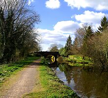 The Grand Western Canal by Rob Hawkins