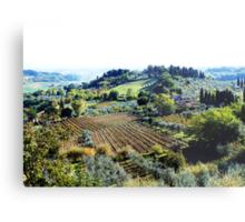 Vineyards and Olive Groves. Metal Print