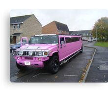 Pink on wheels. Canvas Print