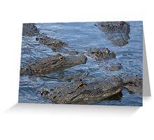 Gators!!! Greeting Card