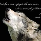 The Jubilation Of The Wolves (V2) by CreativeEm