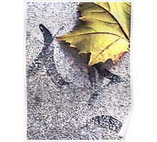 hometown sidewalk character and fallen leaf Poster
