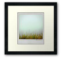 Grass Polaroïd Framed Print