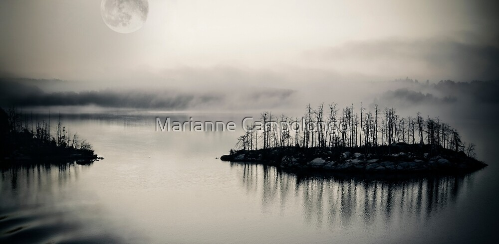 White Night by Marianne Campolongo