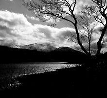Loch Etive by Paul Bettison