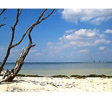Sanibel Beaches Photographic Print