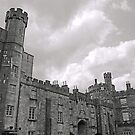 The Marshal Castle -Kilkenny by Ferdinand Lucino