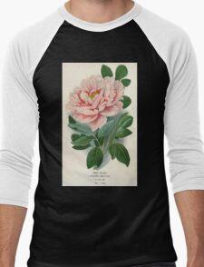 Favourite flowers of garden and greenhouse Edward Step 1896 1897 Volume 1 0003 Tree Peony Men's Baseball ¾ T-Shirt