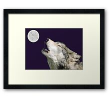 The Jubilation Of The Wolves (V3 Purple) Framed Print