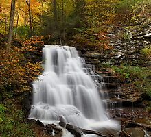 Erie Falls (Autumn) by Tim Devine
