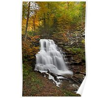 Erie Falls (Autumn) Poster
