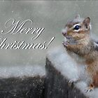 Chippy Christmas by Lori Deiter