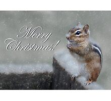 Chippy Christmas Photographic Print