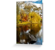Larz Anderson park guest  Greeting Card