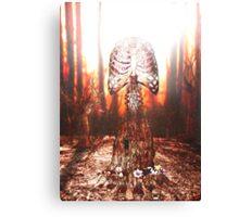 Spirit of Dawn Canvas Print