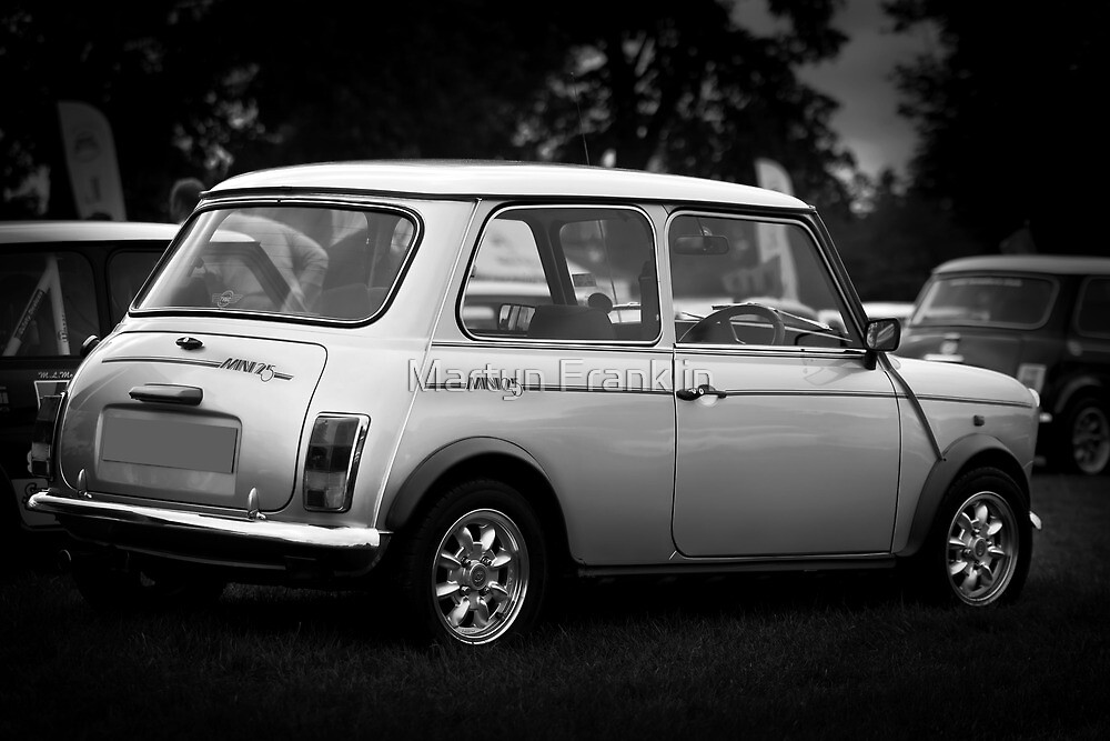 Mini 25 year silver anniversary by Martyn Franklin