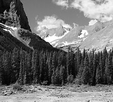 Peaks and forests (b&w) by zumi