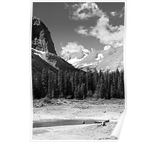 Peaks and forests (b&w) Poster