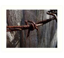Rusty Barbed Wire Art Print