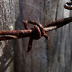 Rusty Barbed Wire by aussiebushstick