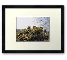 Long Leap Down Framed Print
