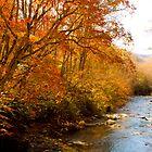 Creek! by vasu