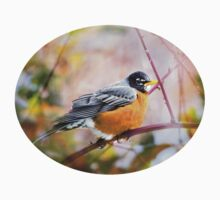 Spring Robin Bird Art Kids Tee