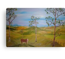 Braford Bull Canvas Print