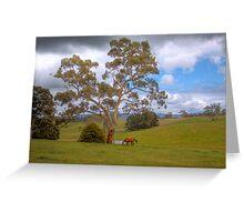 Blakiston - Mattners Rd - Balhanna, Adelaide Hills, South Australia Greeting Card