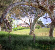 Princess Highway Farm - Nairne, Adelaide Hills, South Australia by Mark Richards