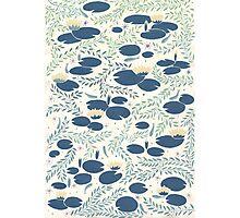 waterlilies Photographic Print