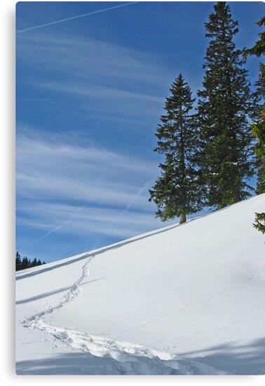 Alps 2 by Jeanne Horak-Druiff