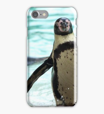 Barry the Penguin iPhone Case/Skin